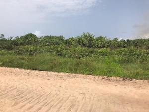 Mixed   Use Land Land for sale Monastery road Sangotedo Ajah Lagos