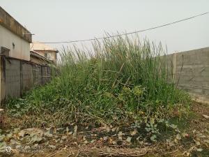 Residential Land Land for sale Taodac estate Ifako-gbagada Gbagada Lagos
