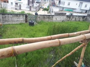 Residential Land Land for sale Ibrahim odofin street Agungi Lekki Lagos