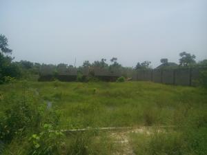 Land for sale Oko cole Oworonshoki Gbagada Lagos