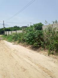 Mixed   Use Land Land for sale Imota Ikorodu Ikorodu Lagos