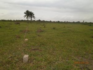 Serviced Residential Land Land for sale Itowolo Agric Ikorodu Lagos