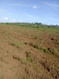 Residential Land Land for sale Mowo Badagry close to Buhari Estate and Badagry MegaPort  Age Mowo Badagry Lagos