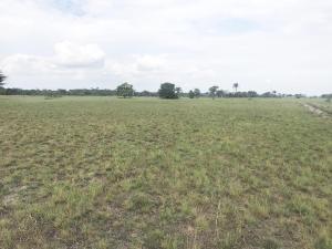 Residential Land Land for rent Lekki free trade zone Free Trade Zone Ibeju-Lekki Lagos