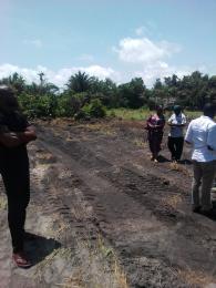 Mixed   Use Land Land for sale Powe village, ibeju lekki, lagos Ibeju-Lekki Lagos
