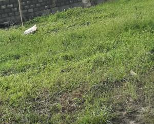 Land for rent Meiran area Alagbado Abule Egba Lagos
