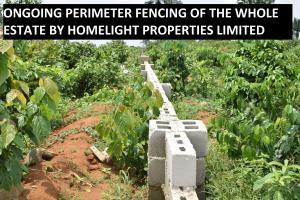 Land for sale Along Eneka-Igwuruta Road, Army Range Eneka Port Harcourt Rivers