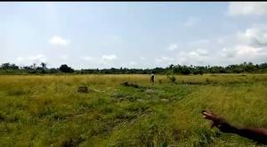Mixed   Use Land Land for sale 7 minutes way to Dangote Refinery Lekki LaCampaigne Tropicana Ibeju-Lekki Lagos