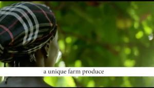 Mixed   Use Land Land for sale Abijo  Lekki Phase 2 Lekki Lagos