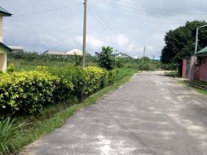 Residential Land Land for sale Rumuodomaya Rupkpokwu Port Harcourt Rivers