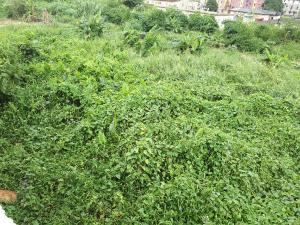 Land for sale Along ALH olajide olalekan close Bucknor Estate Ejigbo Isolo Oshodi. LGV Ejigbo Ejigbo Lagos
