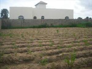Land for sale bank road Osborne Foreshore Estate Ikoyi Lagos