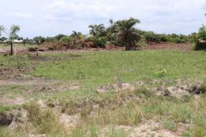 Commercial Land Land for sale .. Mgbakwu town, Awka Territory Awka South Anambra