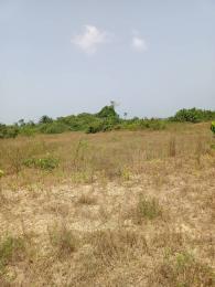 Mixed   Use Land Land for sale Nkubor village Emene Enugu east local government Enugu state Enugu Enugu