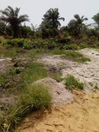 Serviced Residential Land Land for sale Edu town  Epe Road Epe Lagos
