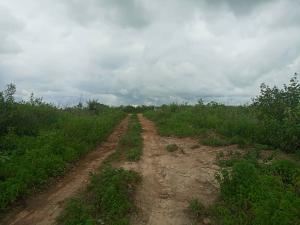 Serviced Residential Land Land for sale Kuje -Abuja Kuje Abuja