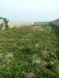 Serviced Residential Land Land for sale Novare ShoppinMall Lekki Sangotedo Ajah Lagos