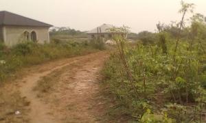 Land for sale Temu Epe Road Epe Lagos