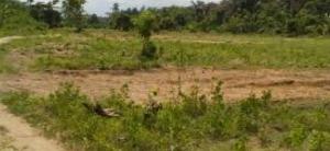 Mixed   Use Land Land for sale Farm bus stop Epe-Expy Sangotedo Ajah Ajah Lagos