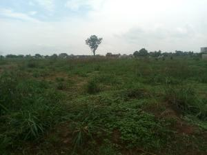Industrial Land Land for sale After Naze Junction along aba road Owerri Imo