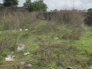 Land for sale alli owe Ifako-gbagada Gbagada Lagos