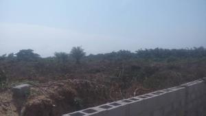 Mixed   Use Land Land for sale Mayinre Road, Onikonkon Town Eleranigbe Ibeju-Lekki Lagos