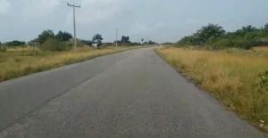 Land for sale - Free Trade Zone Ibeju-Lekki Lagos
