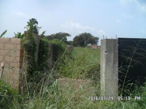 Land for sale Ewo-Osile Ifo Ifo Ogun - 0