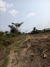 Residential Land Land for sale Alenibare off Idi Ahun Elebu Akala Express Way Ibadan Akala Express Ibadan Oyo - 0
