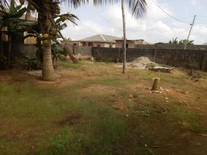 Land for sale Aiyetoro  Ayobo Ipaja Lagos - 0