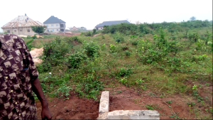 Land for sale - Central Edo