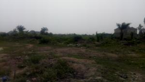 Residential Land Land for sale C.M.B. Estate Back Of Shoprite  Monastery road Sangotedo Lagos