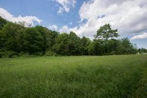 Commercial Land Land for sale    Alagomeji Yaba Lagos