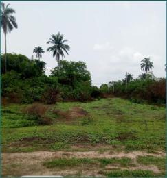 Commercial Land Land for sale Wonderland Agu Awka South Anambra