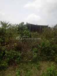 Commercial Land Land for sale Crawford University, Agbara Agbara-Igbesa Ogun