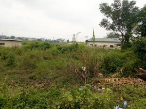 Mixed   Use Land Land for sale oritamerin Area, Elebu main road, off Akala Express Akala Express Ibadan Oyo