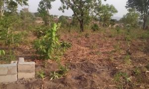 Land for sale Crusher City, Near Federal University (FUL) Permanent Site Lokoja Kogi