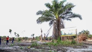 Mixed   Use Land Land for sale Arapagi Eleranigbe Ibeju-Lekki Lagos