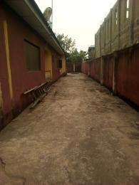 1 bedroom mini flat  Self Contain Flat / Apartment for rent Isuti rd Igando Ikotun/Igando Lagos