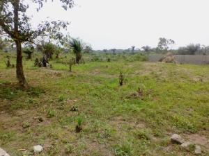 Land for sale after fashola estate Abijo Ajah Lagos - 0