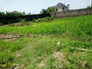 Residential Land Land for sale  Enuovue phase 1, Nkwelle Ezeku Onitsha North Anambra