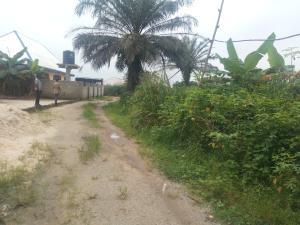 1 bedroom mini flat  Residential Land Land for sale Iguruta Igwurta-Ali Port Harcourt Rivers