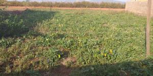 Residential Land Land for sale Karu Nassarawa