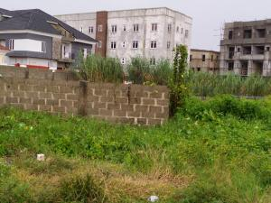 Commercial Land Land for sale Directly along Ado Road by Chillat Plaza (facing the road) Ado Ajah Lagos