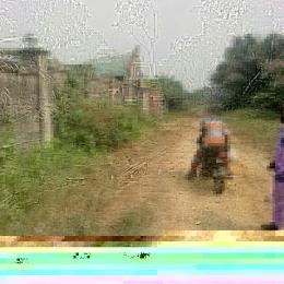Land for sale Besides the new International Airport Eleranigbe Ibeju-Lekki Lagos