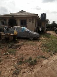 5 bedroom Detached Bungalow House for sale  Very popular Street, Major Road, Aboru Iyana Ipaja Iyana Ipaja Ipaja Lagos
