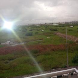 Land for sale LFTZ Ibeju  Free Trade Zone Ibeju-Lekki Lagos