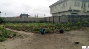 Land for sale Ogunfayo Palace Road (after Mayfair Gardens) Ibeju-Lekki Lagos - 0