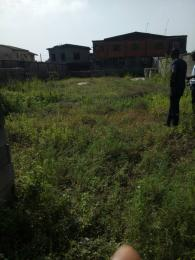 Land for sale PEDRO Ifako-gbagada Gbagada Lagos
