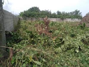 Residential Land Land for sale Victory estate  Amuwo Odofin Amuwo Odofin Lagos